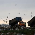 Архангельской области пообещали 10 млрд руб. за прием московского мусора