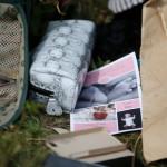 Пять стран решили финансировать преследование виновных в гибели MH17