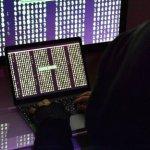 Трамп назвал статью NYT об активизации кибератак на Россию предательством