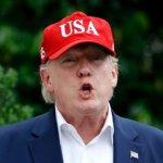 Трамп анонсировал высылку из страны миллионов мигрантов